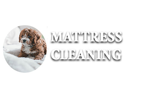 mattress-cleaning