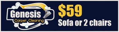 $59 sofa